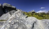 Thumbnail Limestone rock formations on Castle Hill, South Island, New Zealand, Oceania