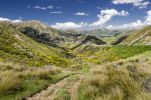 Thumbnail Path across the hills, Craigieburn Range, Porters Pass, Canterbury, South Island, New Zealand, Oceania