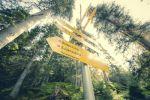 Thumbnail Trail signs, signposts, Sulzenau Huette, Sulzenaualm alp, wild water trail, Stubai Valley, Tyrol, Austria, Europe