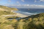 Thumbnail Beach, Sandfly Bay, Otago Peninsula, South Island, New Zealand, Oceania