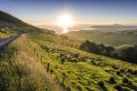 Thumbnail Sunset over grassland and a country road, Dunedin Beach at the back, Otago Peninsula, South Island, New Zealand, Oceania