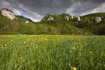 Thumbnail View from the Danube Valley to Burg Wildenstein Castle with rocks, Baden-Wuerttemberg, Germany, Europe