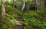 Thumbnail Burgbach Waterfall near Schapbach in the Black Forest, Baden-Wuerttemberg, Germany, Europe