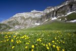 Thumbnail View towards Alpstein massif from Schwaegalp in summer, Appenzell, Switzerland, Europe