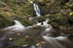 Thumbnail Falkau waterfalls in autumn, near Mt Feldberg, Black Forest, Baden-Wuerttemberg, Germany, Europe /