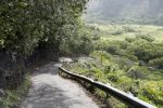 Thumbnail Steep mountain road with a 25 slope, Waipio Valley, Big Island, Hawaii, USA