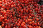 Thumbnail Tomatoes, market stall