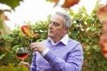 Thumbnail Winemaker or vintner holding a glass of wine in his vineyard, Rhineland-Palatinate, Germany, Europe
