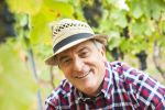 Thumbnail Portrait of a winemaker or vintner in his vineyard, Rhineland-Palatinate, Germany, Europe
