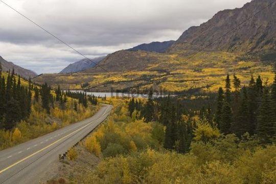 South Klondike Highway in Indian summer, White Pass, Tagish Lake behind, British Columbia, B.C., Yukon, Canada, North America