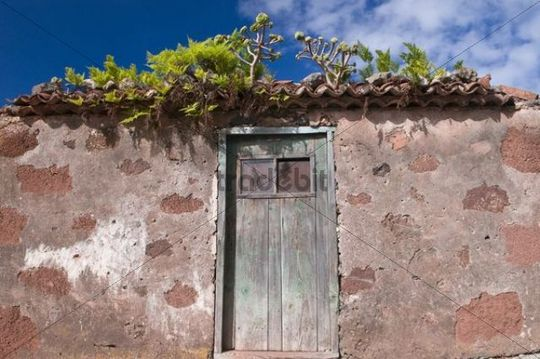 Deserted house in La Tosca, La Palma, Canary Islands, Spain, Europe