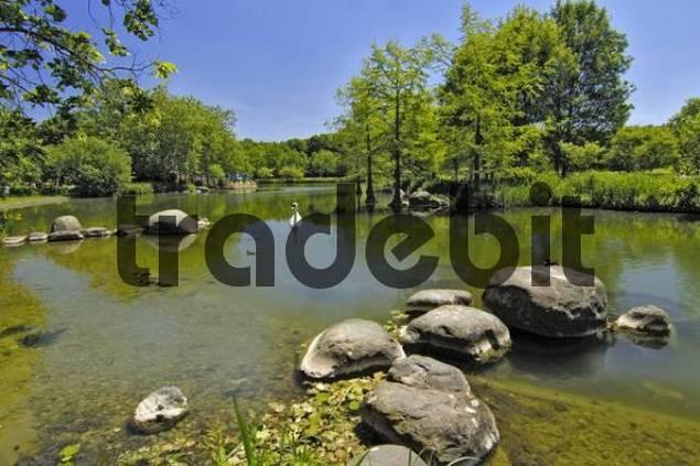 lake Westpark Munich