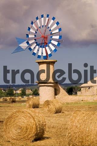 Majorca, windmill on a cornfield near Palma