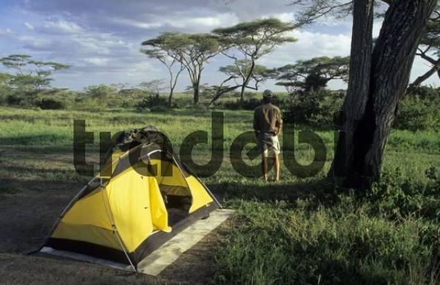 safari camp with acacias in East Africa