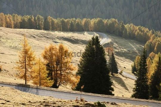 Nockalm road, Nockberge National Park, Carinthia, Austria, Europe
