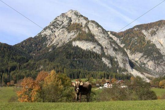 Mt Stoderzinken near Groebming, Kemetgebirge Range, Styria, Austria, Europe