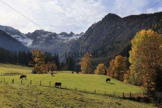 Seewigtal Valley in Schladminger Tauern, Styria, Austria, Europe