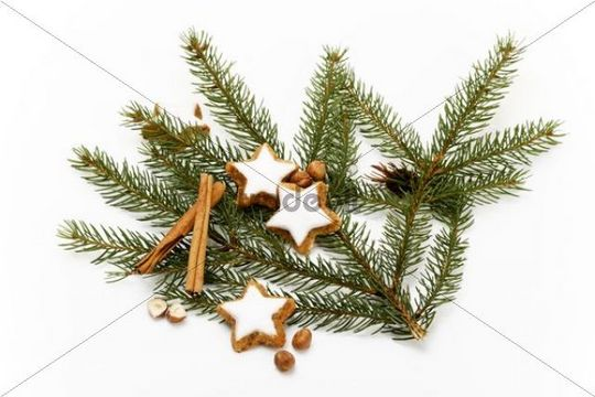Star-shaped cinnamon cookies on fir branches with cinnamon sticks and hazlenuts
