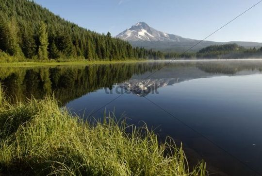 Trillium Lake and the Mount Hood Volcano, Cascade Range, Oregon, USA