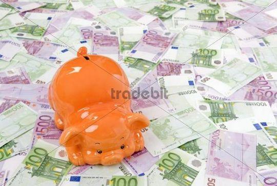 Piggy bank and many Euro banknotes