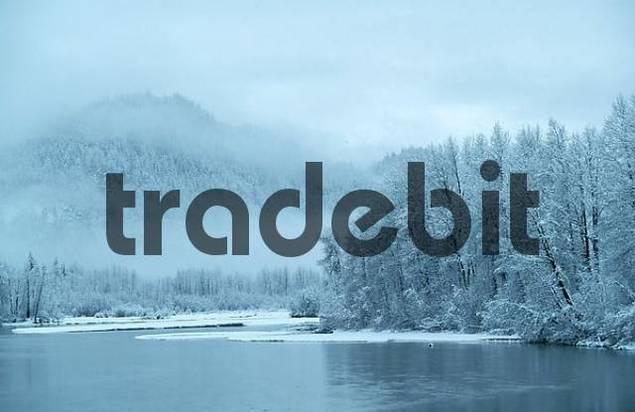 Chilkat River on winter morning, Chilkat River Valley, Alaska, USA