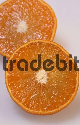 Orange fruits Citrus aurantium sinensis
