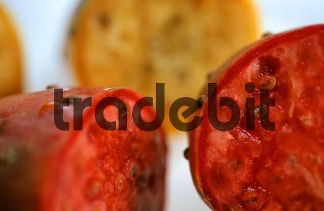 Cactus fruits Opuntia ficus-indica