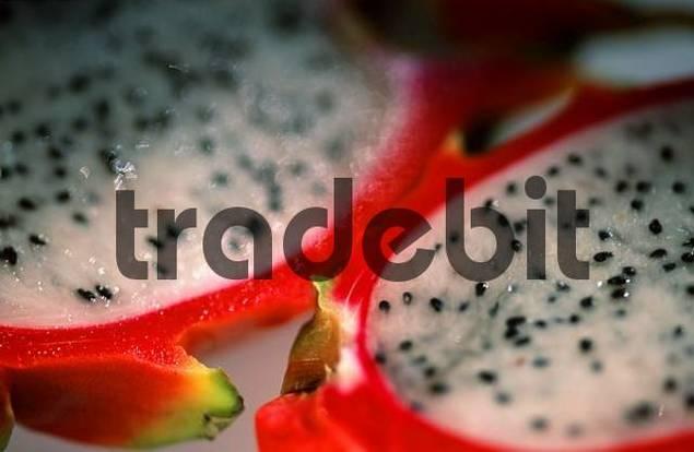 Dragonfruit Selenicereus megalanthus Pitahaya