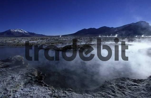 Salar de Surire, Altiplano, Chile / Patagonia
