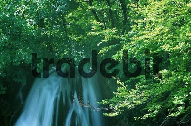 Waterfall, Plitvice Lakes national parks, Croatia