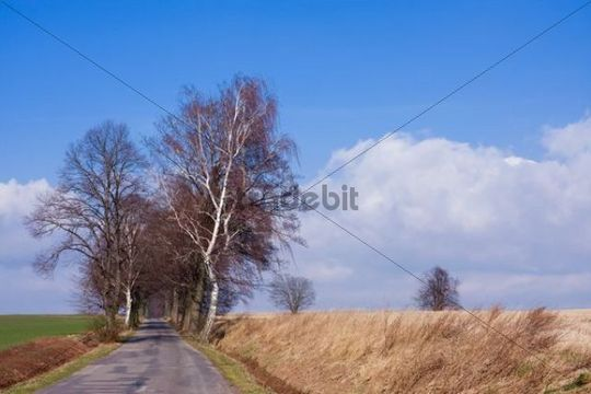 Early spring landscape near Bozanov, Nachod district, East Bohemia, Czech Republic, Europe