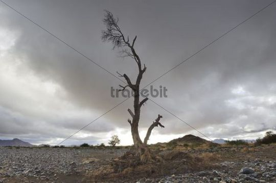 Tsauchab Rivier in front of a rain front, Namibia, Africa
