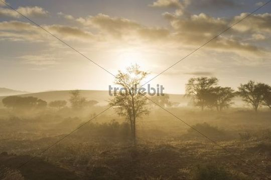 Sunrise over morning mist in the Namib Desert near Sossusvlei, Namibia, Africa