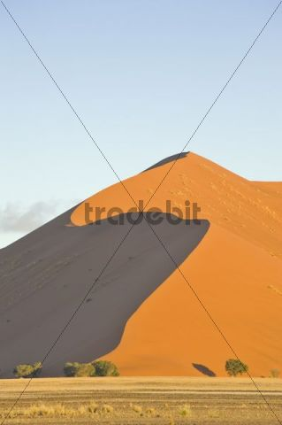 Sand dunes of the Namib Desert in sunset light, Republic of Namibia, Africa