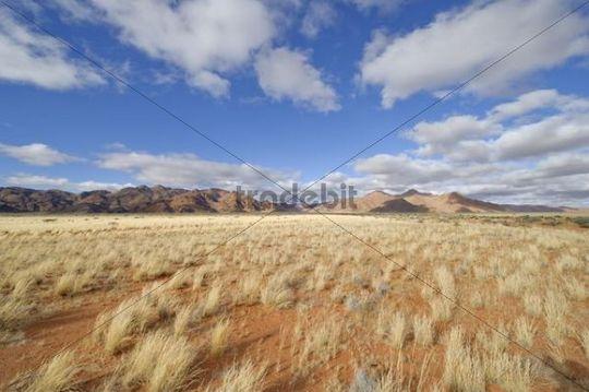 Namib Desert dunes on road D0707, Namibia, Africa