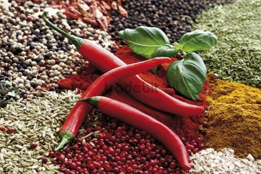 Various spices, rose pepper, bell pepper powder, chili peppers, basil