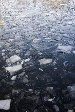 Ice floes in water in winter