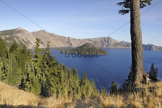 Crater lake of the Mount Mazuma Volcano, Wizard Island, Crater Lake National Park, Oregon, USA