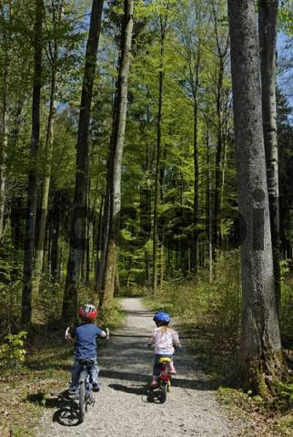 two children are cycling through a forest bicylce ride