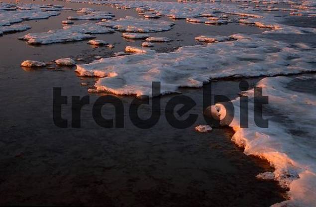 Ice floes, national park Wadden Sea, Schleswig-Holstein, Germany