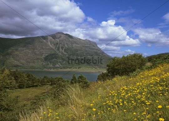 View onto Loch Torridon, Shieldaig, Scotland, United Kingdom, Europe