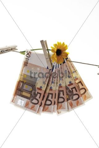 Forged euro banknotes on a clothesline