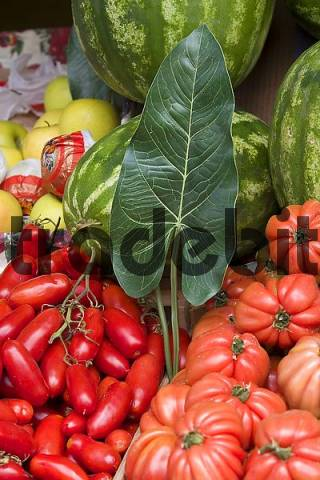 Vegetables on a market in milano Italy