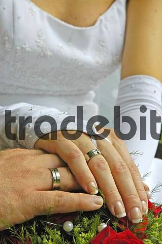 wedding bands on the hands of a bridal couple
