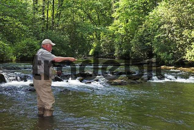 Fly fishing in northern georgia usa download sports for Fly fishing georgia