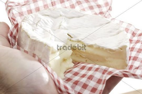 Hand holding soft cheese on waxed paper
