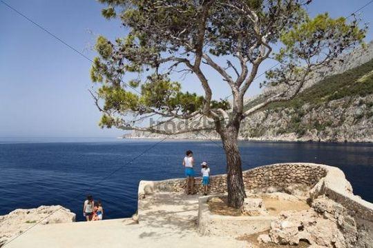 Viewpoint on the coast, Zavala, Hvar Island, Dalmatia, Croatia, Europe