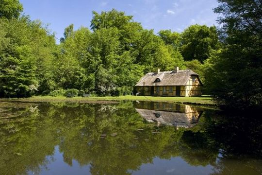 old house at a forest lake  denmark  europe