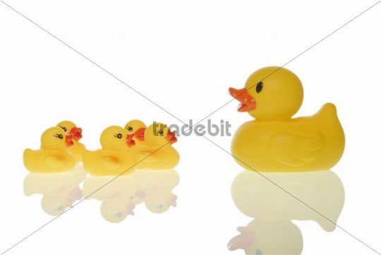 Rubber duck family, symbolic for coaching