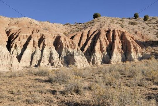 Rock formation, sandstone, detail, Cathedral Gorge State Park near Pioche, Nevada, USA